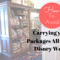 Sending Packages Back To Your Resort At Walt Disney World from How I Pinch A Penny #pinoftheday #disney #travel #verabradley