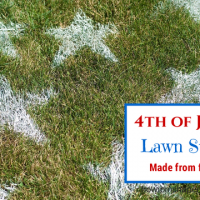 4th of July Lawn Stars from How I Pinch A Penny.com